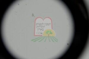 פסוקאי מחסן שנמצא בגרגרי חרדל לאחר סינון