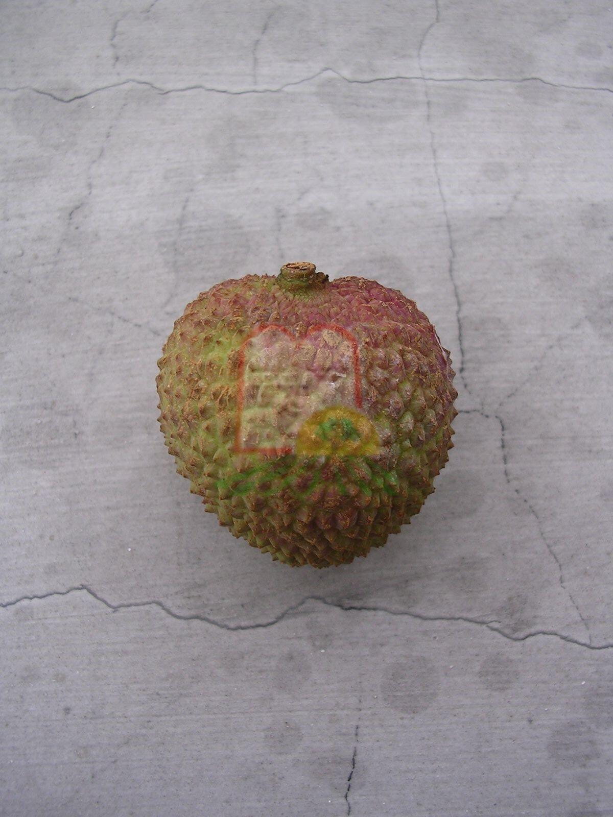 פרי הליצ'י