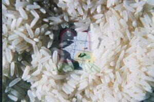 החדקונית בין גרגירי האורז