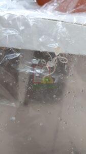 אניסאקיס שנתפס על שקית ואקום ששווקו בה דגי מרלוזה