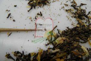 חיפושיות בין פרחי הקמומיל
