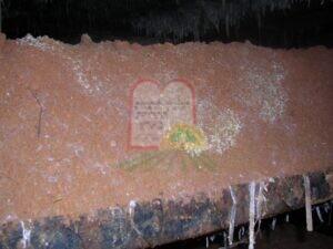 מצע החול הנמצא על גבי הקומפוסט, לאחר ציצת הנבגים