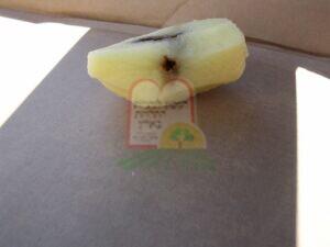 החמה בתפוח אדמה ללא קליפה